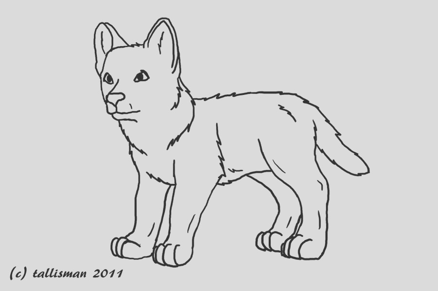 baby wolf pup sketch templates