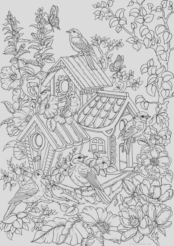 birdhouse printable adult coloring page