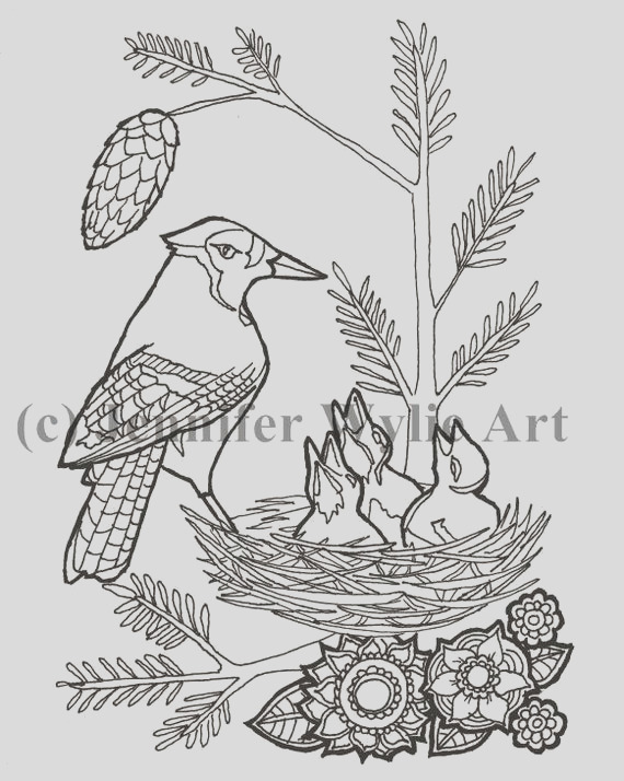 blue jays colouring page colouring page