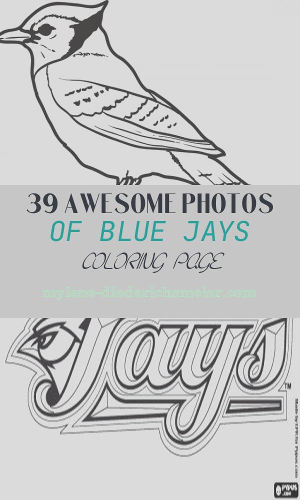 Blue Jays Coloring Page Luxury Printable Blue Jay Coloring Page for Kids – Supplyme