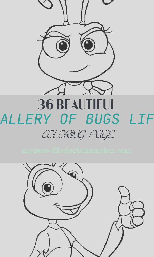 Bugs Life Coloring Page Unique A Bug S Life Coloring Pages Download and Print A Bug S