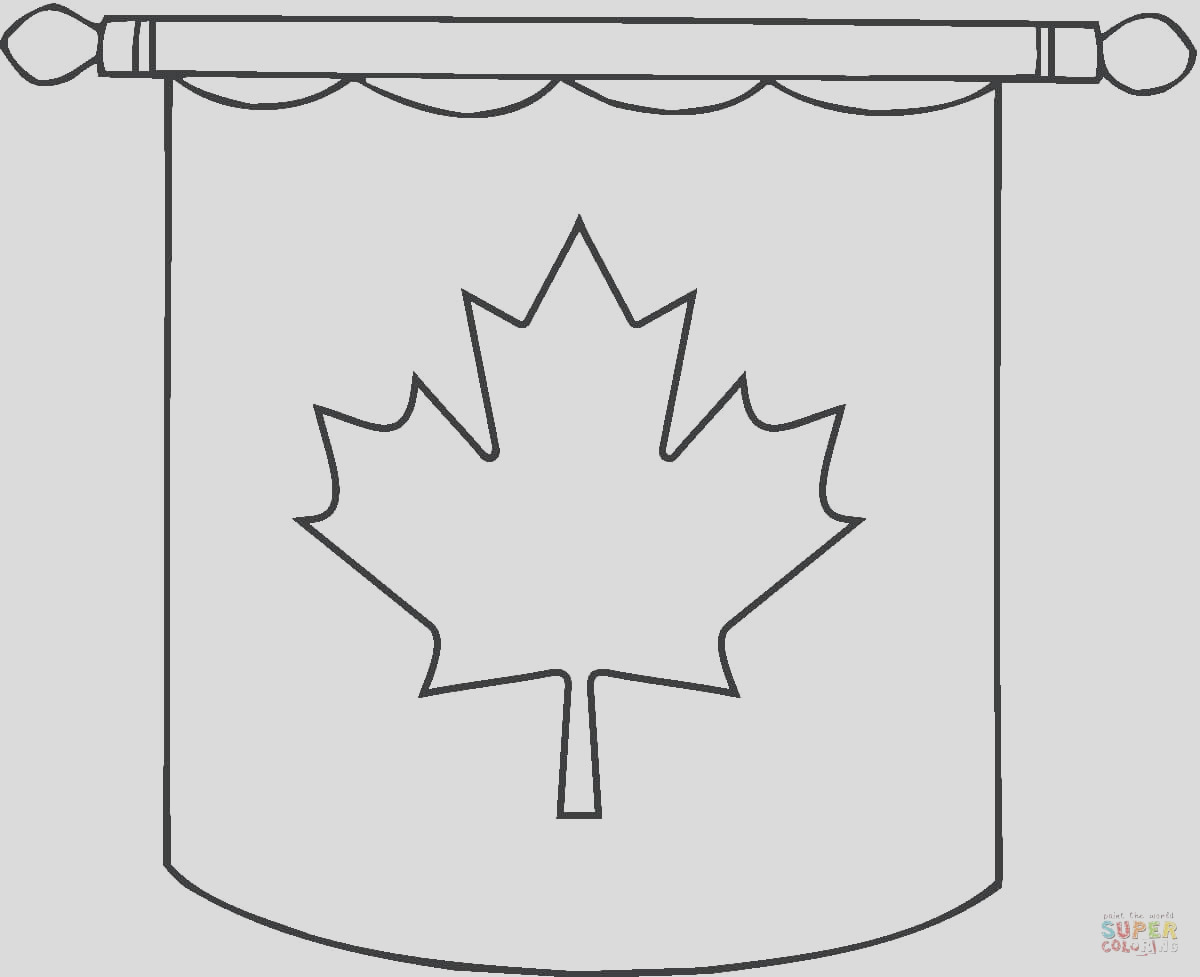 hanging canadian flag