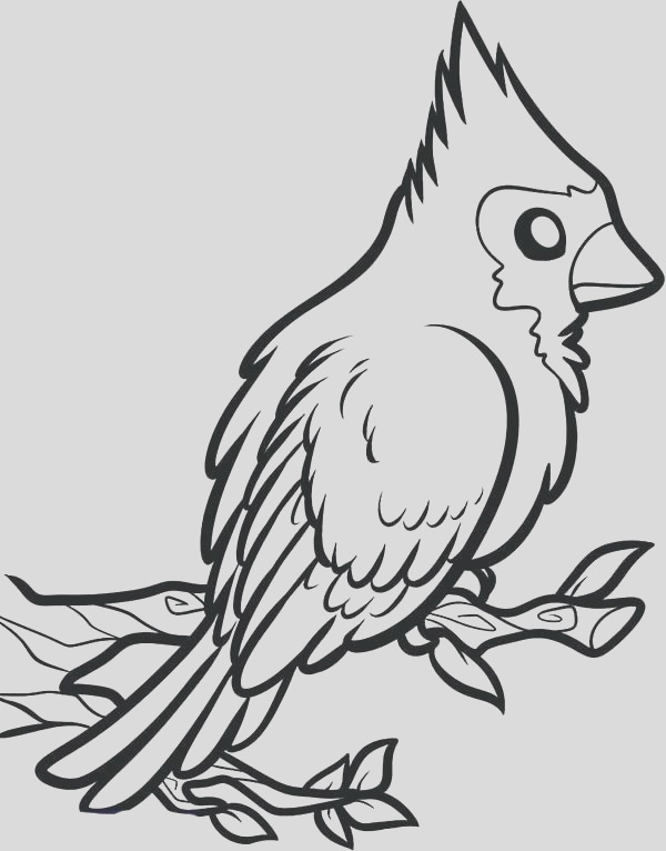 cardinals football coloring pages