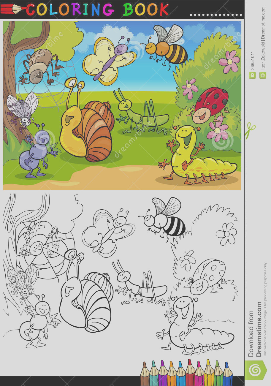 stock image insects bugs coloring book page image