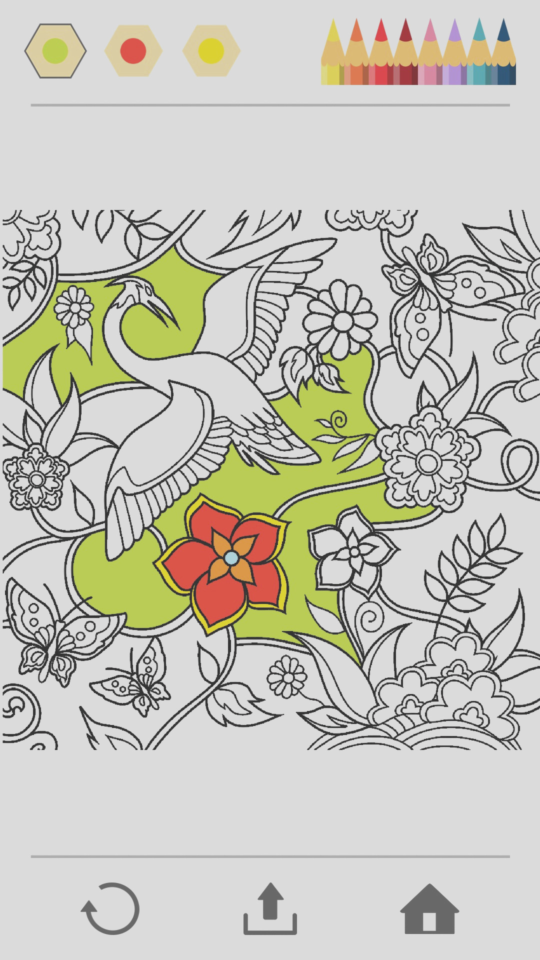 9420 colorfy coloring book free