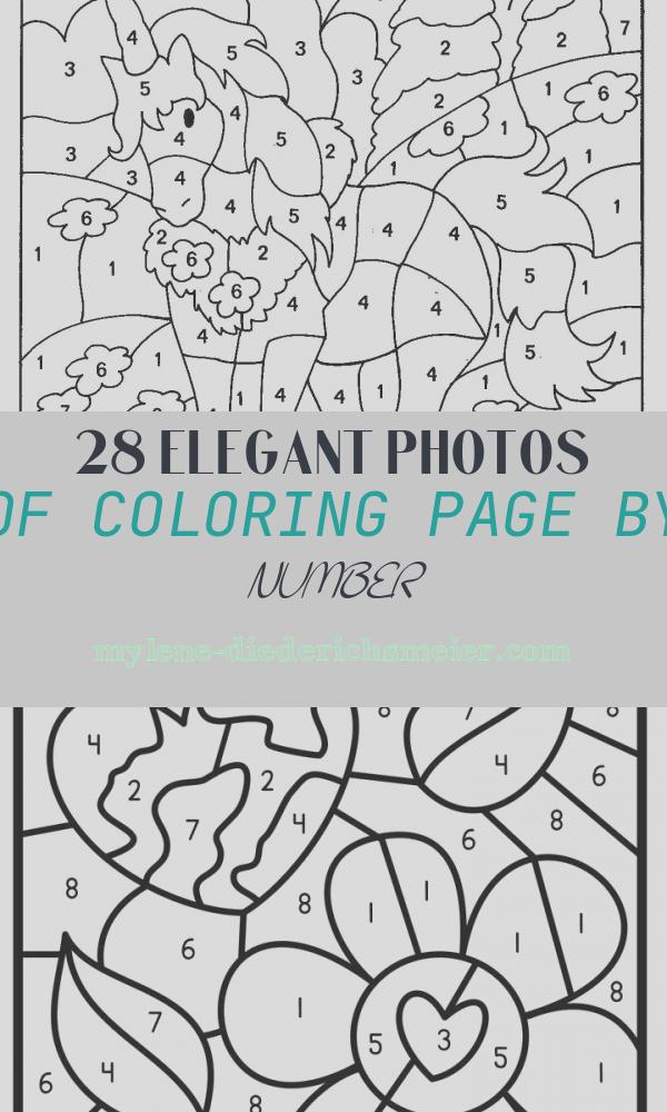 Coloring Page by Number Best Of Free Printable Color by Number Coloring Pages Best