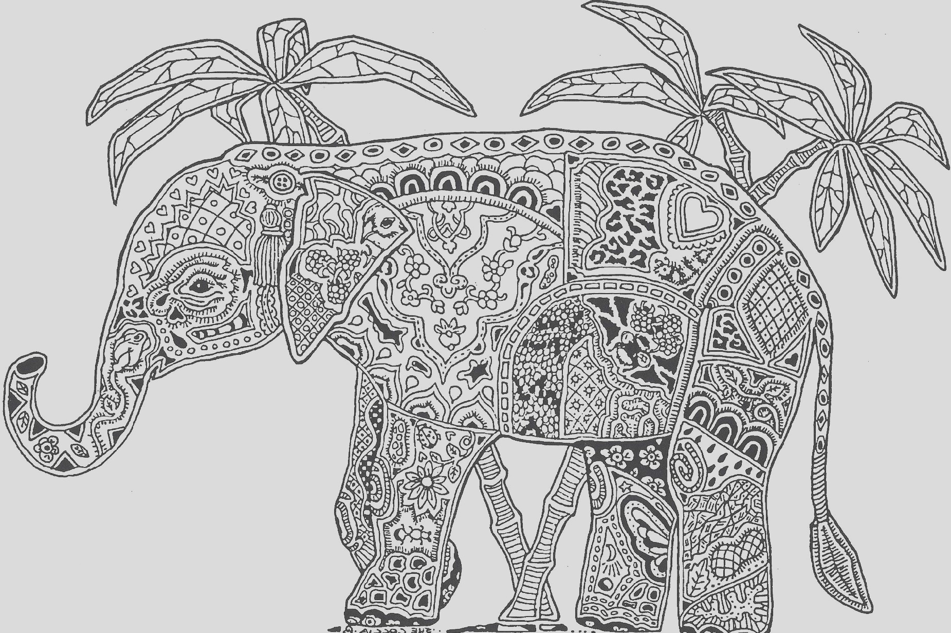 adult coloring pages pdf elephant