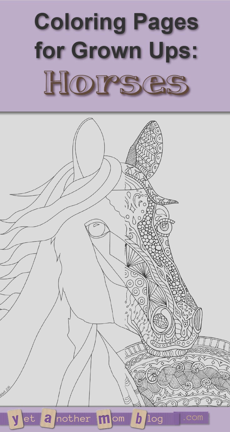 coloring pages horses 1