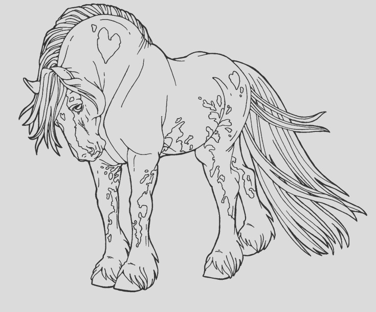 horses coloring for adults art pages