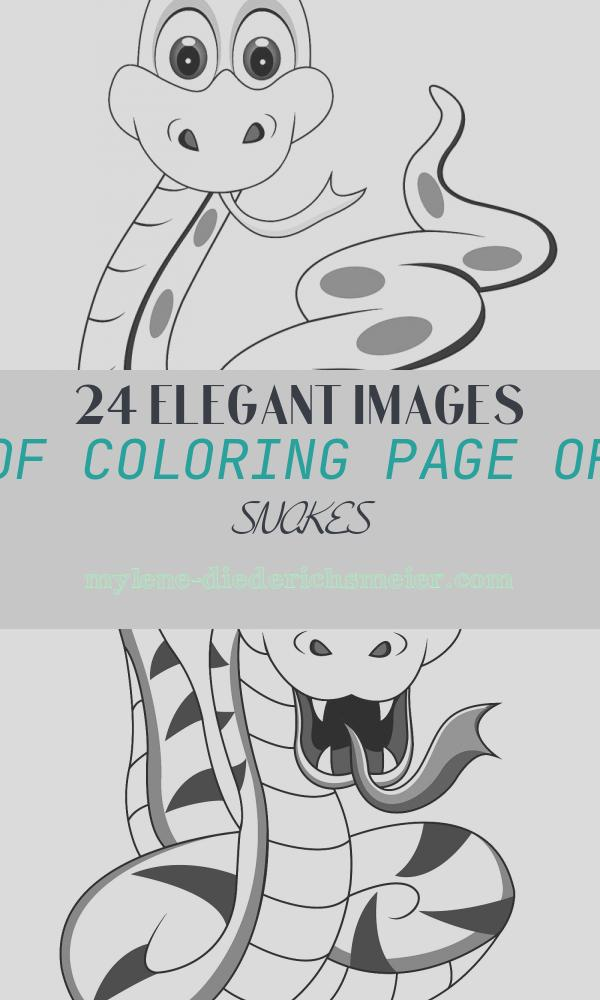 Coloring Page Of Snakes Inspirational Snake 10 Coloring Page Free Snake Coloring Pages