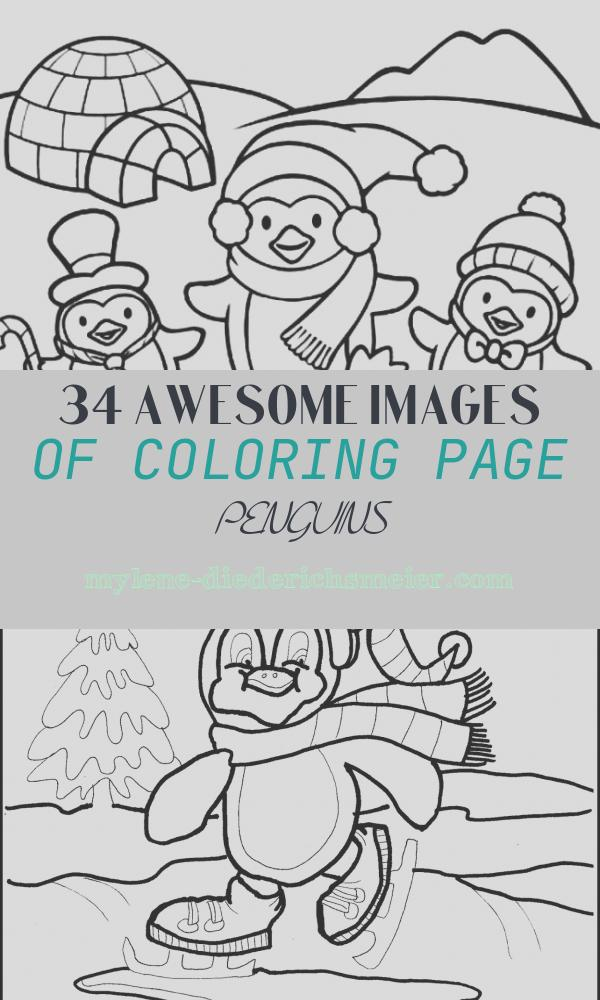 Coloring Page Penguins Awesome Penguins Coloring Pages to and Print for Free