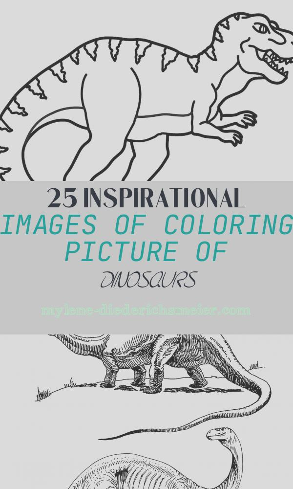 Coloring Picture Of Dinosaurs Beautiful Coloring for Kids with T Rex Dinosaur Colouring Book for
