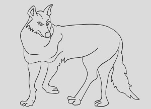 coyote coloring pages