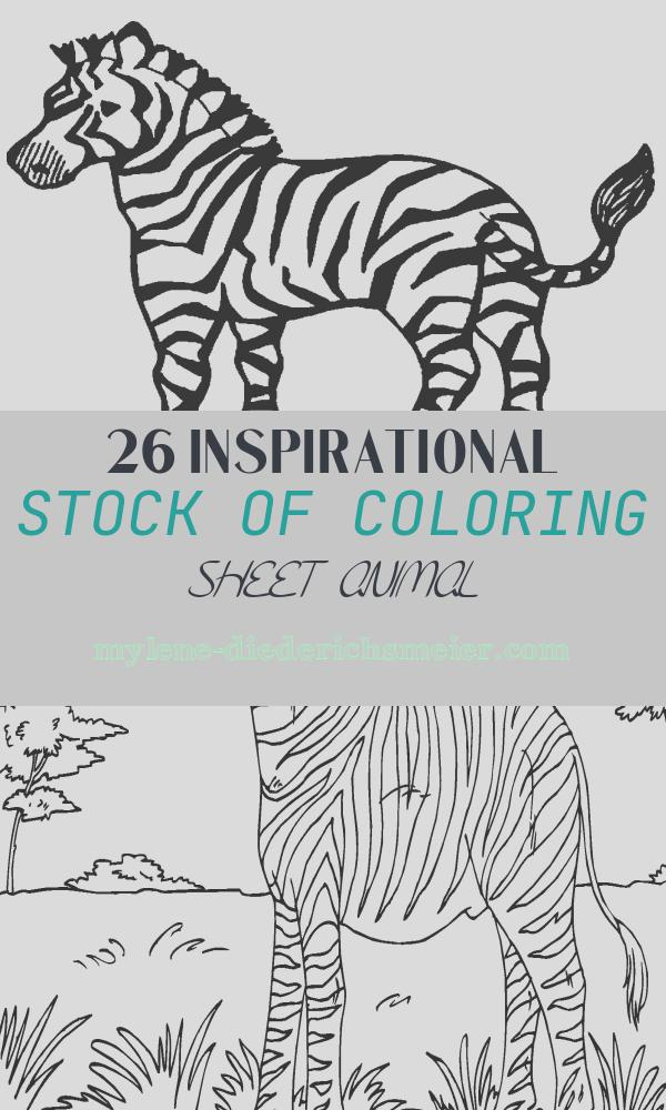 Coloring Sheet Animal Best Of Free Printable Zebra Coloring Pages for Kids