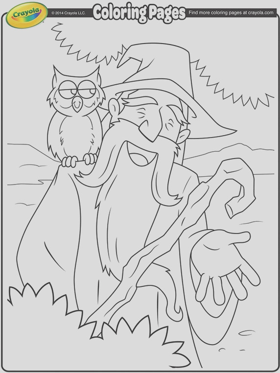 wizard and his owl coloring page