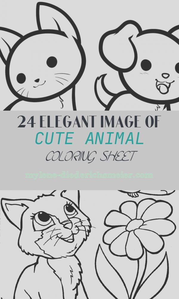 Cute Animal Coloring Sheet Unique Animal Coloring Pages Best Coloring Pages for Kids