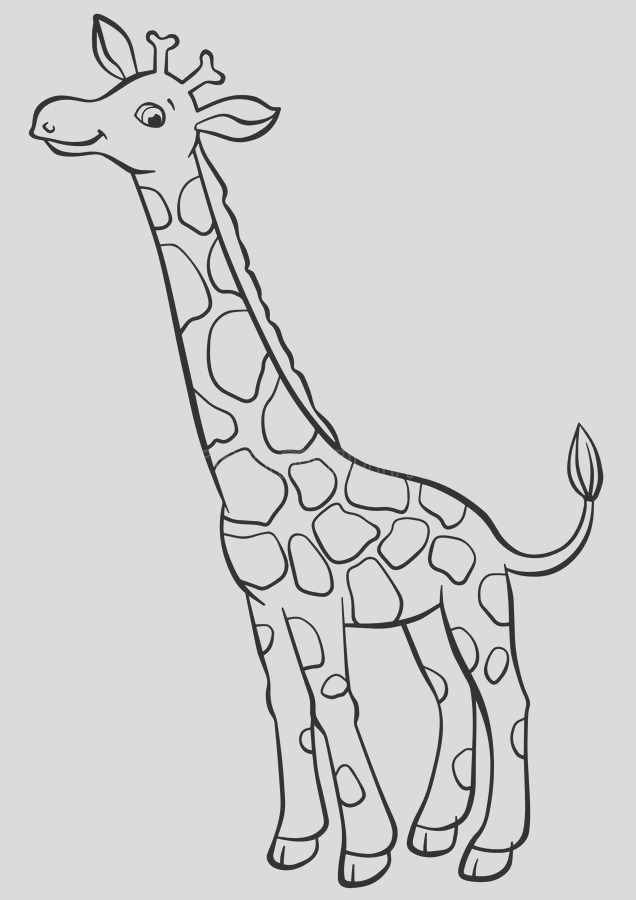 stock illustration coloring pages animals little cute giraffe stands smiles image