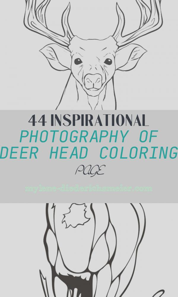 Deer Head Coloring Page Fresh A Deer Head Coloring for Kids Animal Coloring Pages