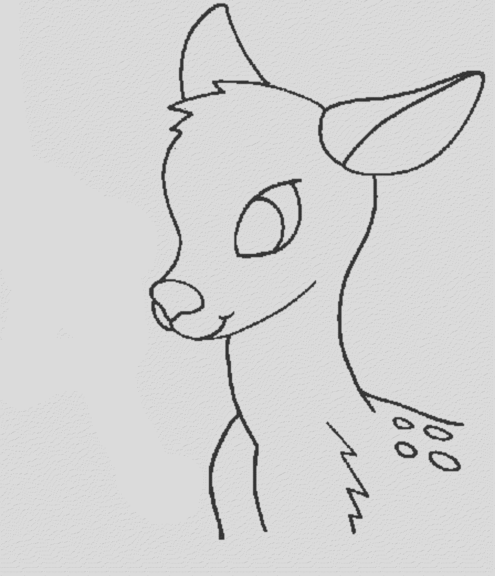 deer coloring pages totally enjoyable leisure time activity