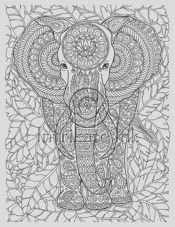 elephant coloring page animal coloring
