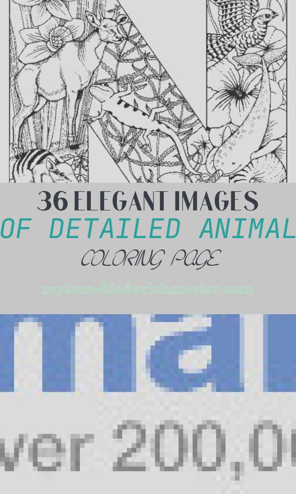 Detailed Animal Coloring Page Fresh Detailed Animal Coloring Pages Timeless Miracle