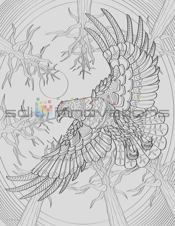 detailed animal adult coloring page set