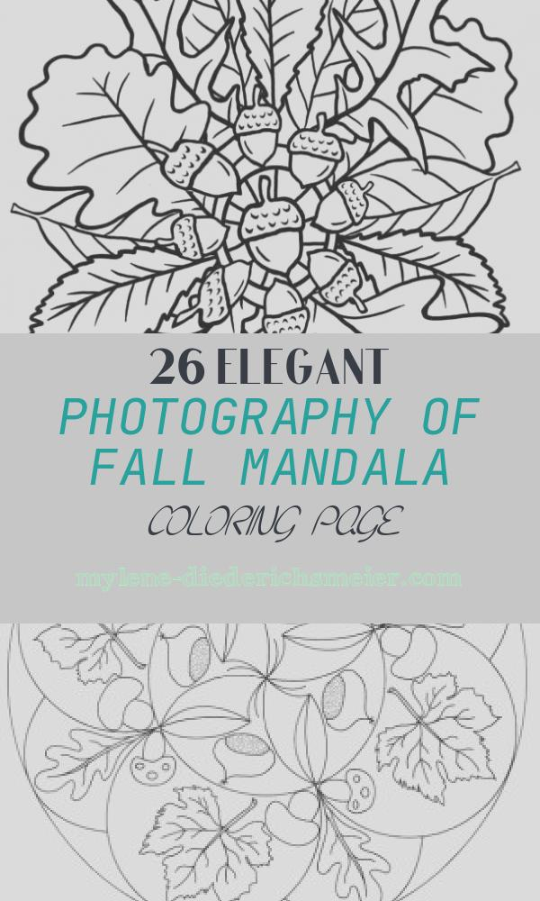 Fall Mandala Coloring Page Unique 297 Best Coloring Autumn & Thanksgiving Images On