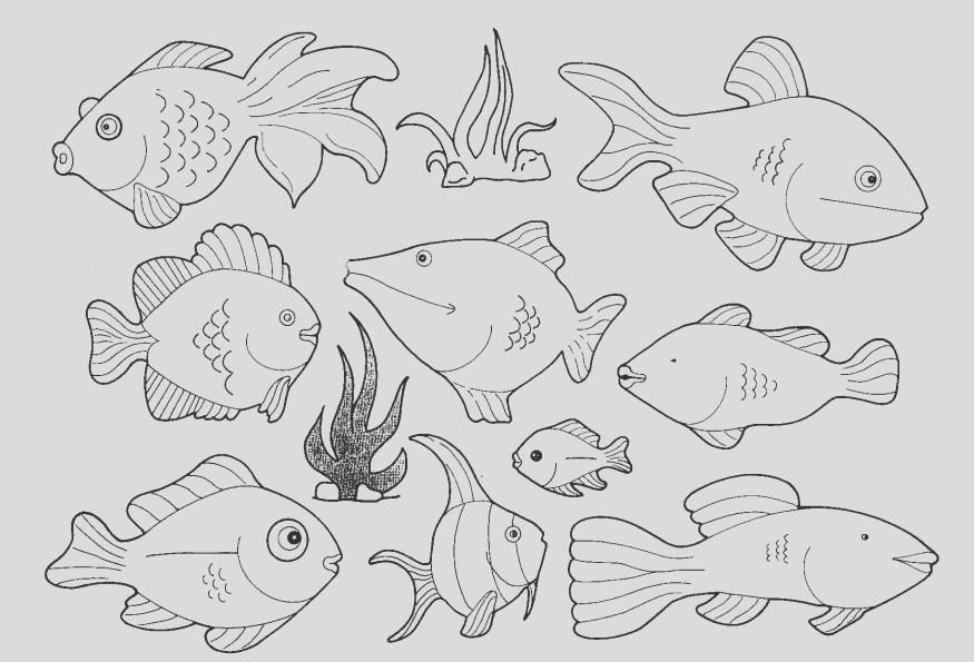 pictures fish