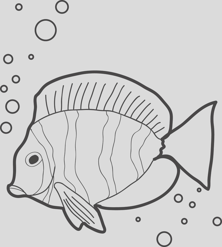 big beautiful fish with bubbles coloring page a4274