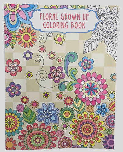 vision st publishing llc bundle of 4 grown up coloring books 2 floral 2 geometrical
