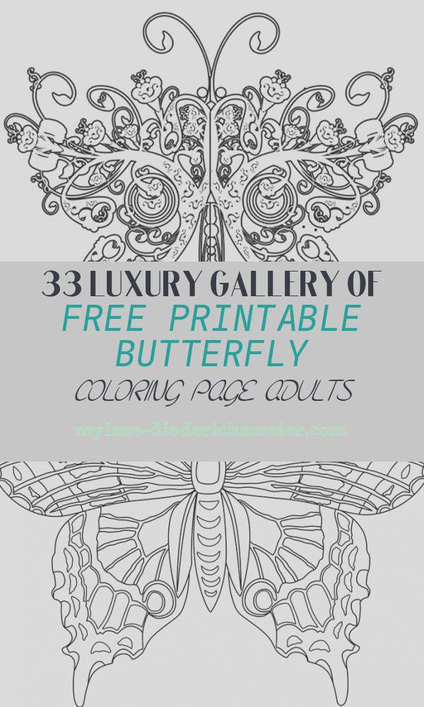 Free Printable butterfly Coloring Page Adults Unique Plicated Coloring Pages for Adults Free to Print