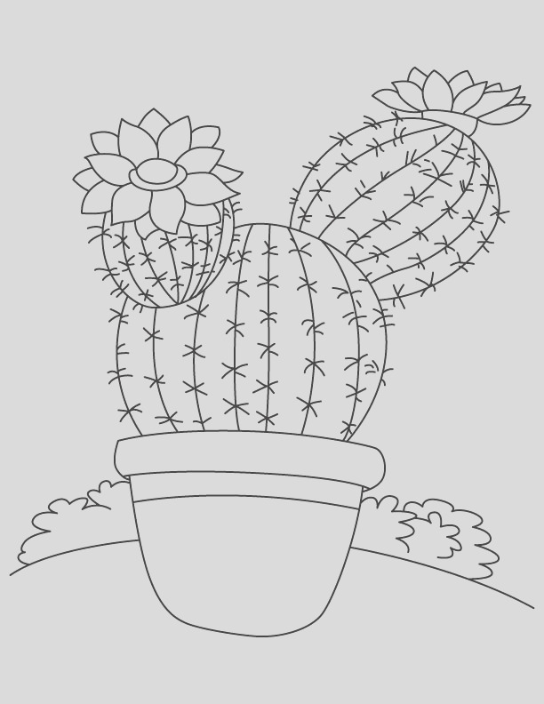 tall tree like cactus coloring page 1d4767