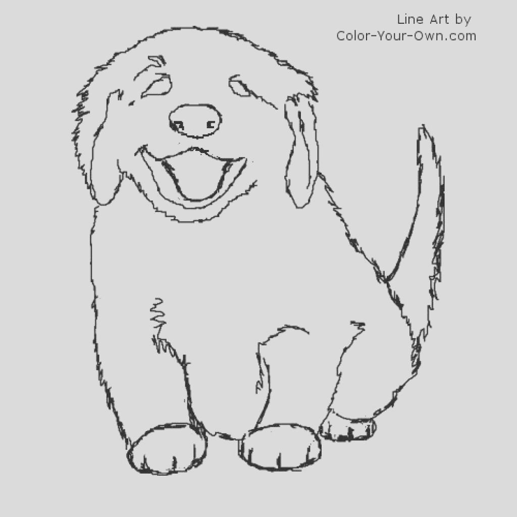 golden retriever drawing