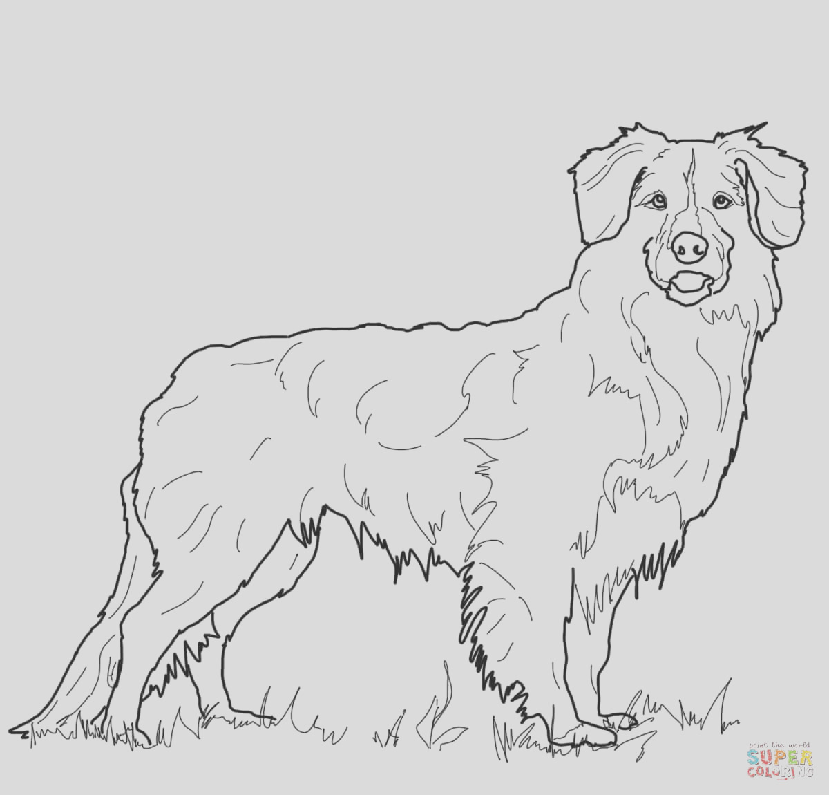 golden retriever puppy coloring pages printable