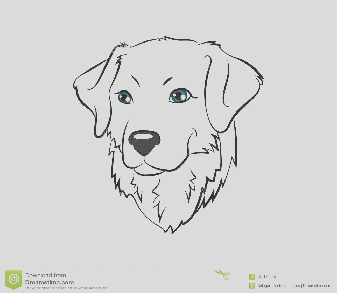 dog head vector icon illustration coloring page golden retriever english cream pet portrait book image