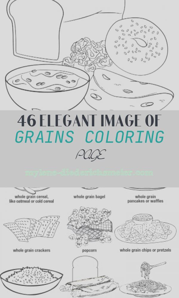 Grains Coloring Page Fresh Adult High School Middle School Myplate Coloring Book