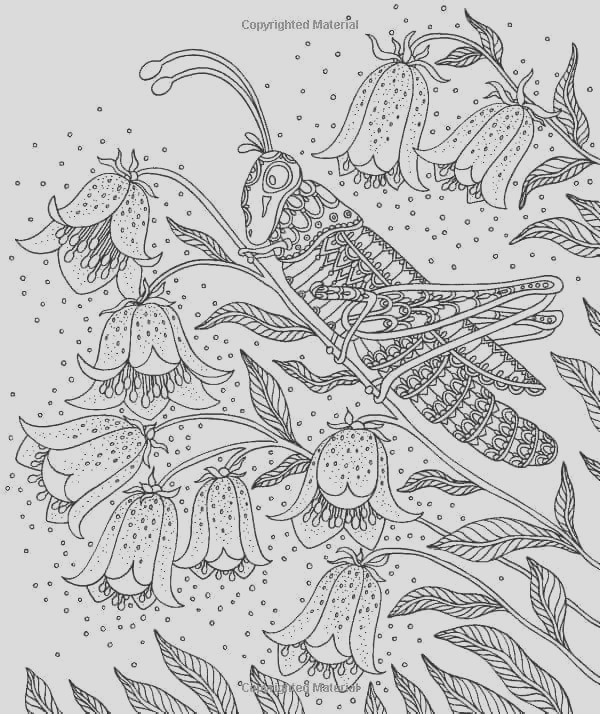 by hanna karlzon coloring book sketch templates