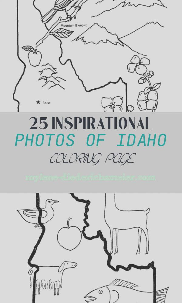 Idaho Coloring Page Elegant Idaho State Outline Coloring Page