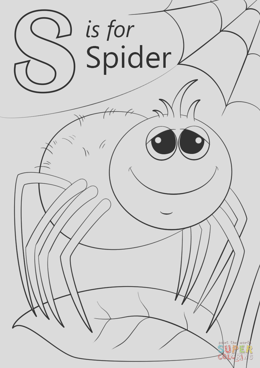 letter s is for spider