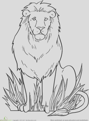 color regal lion