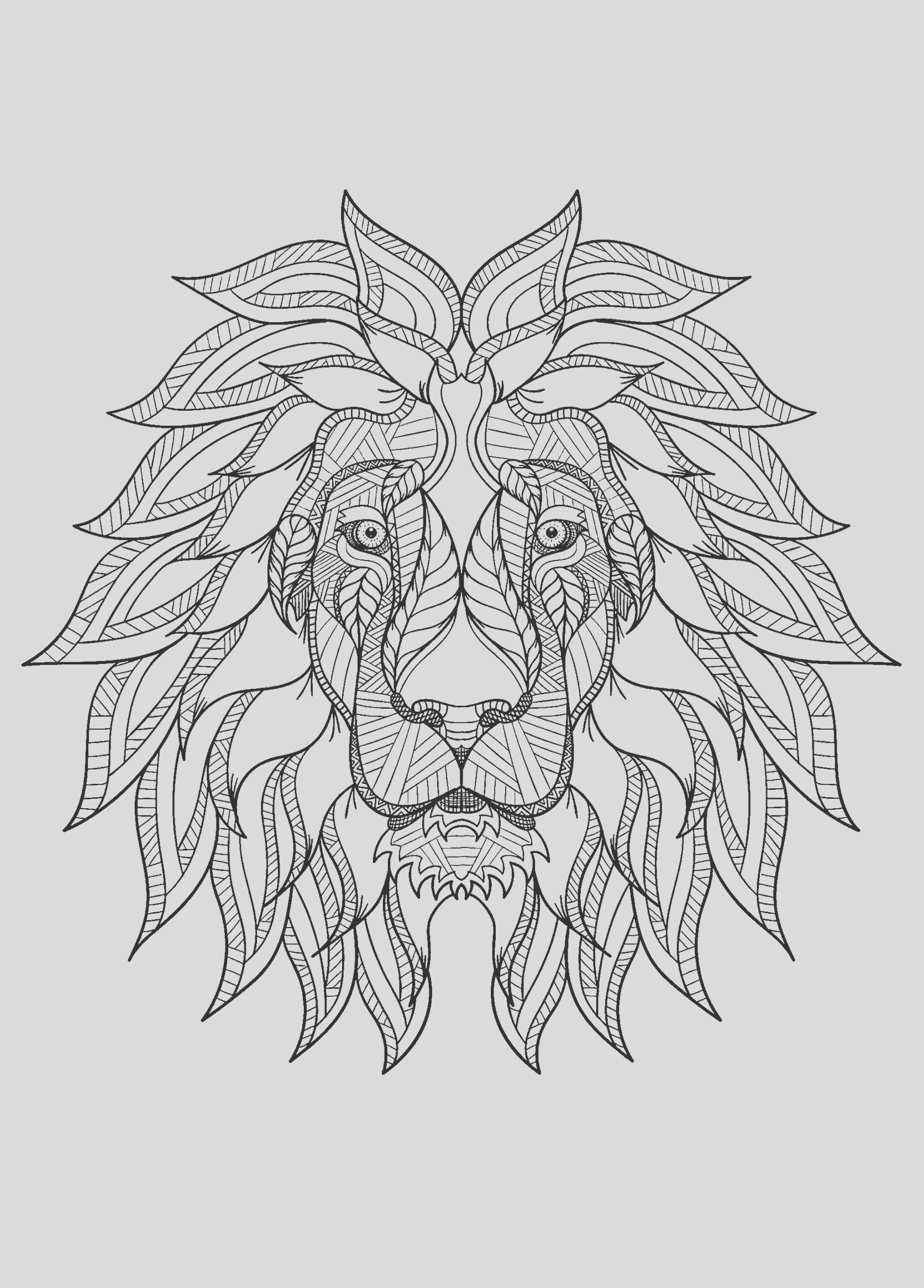 image=lion coloring pages for children lion 1