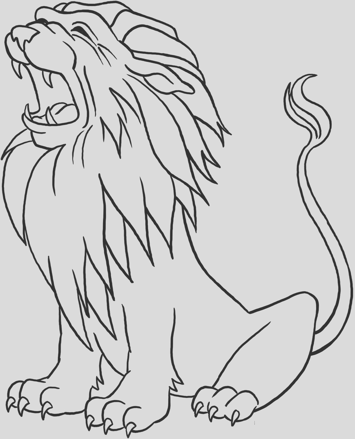 male lion drawing