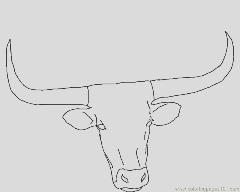 longhorn head coloring page