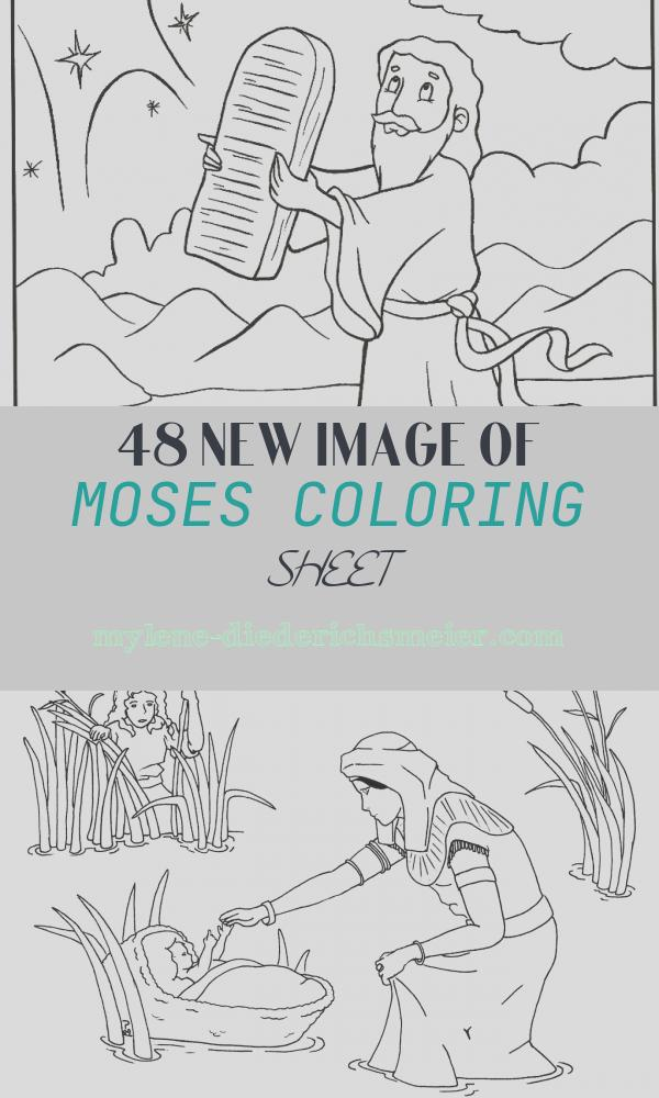 Moses Coloring Sheet Fresh Free Printable Moses Coloring Pages for Kids