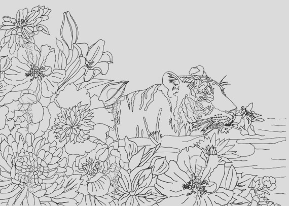 masjas nature 4 set of 3 coloring pages