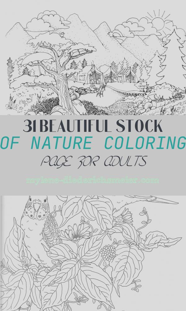 Nature Coloring Page for Adults Fresh Coloring Pages for Adults Nature Coloring Home