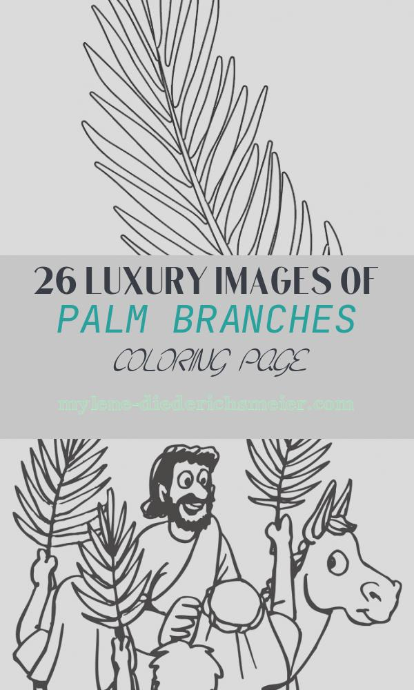 Palm Branches Coloring Page Awesome Palm Sunday Coloring Page Palm Branch Template