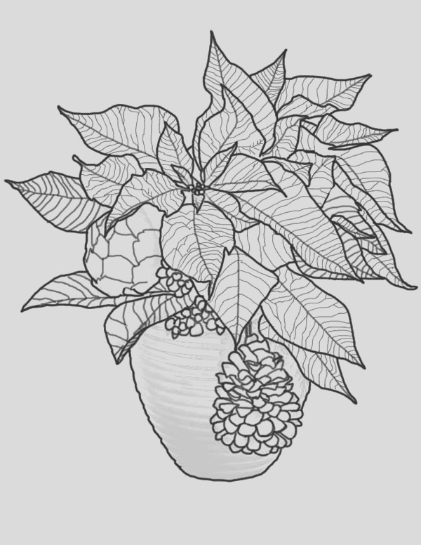 christmas poinsettia coloring page 2