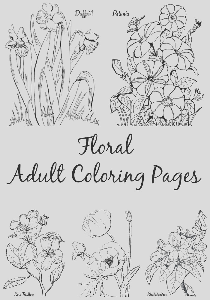 7 floral adult coloring pages