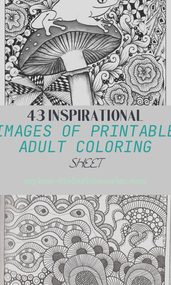 Printable Adult Coloring Sheet Unique Printable Coloring Pages for Adults 15 Free Designs